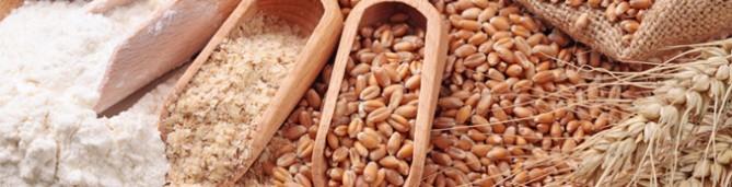 Cereales Ecológicos - Productos